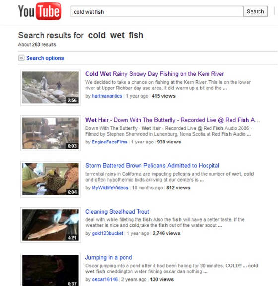 cold wet fish video